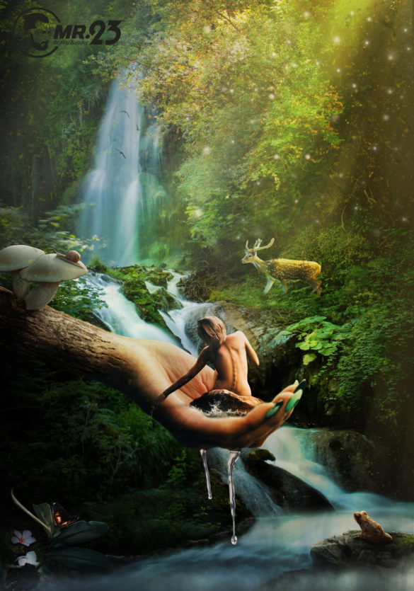Magical Forest - Photo Manipulation